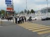 vica-2012-042