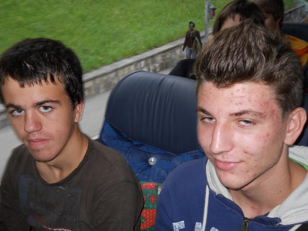 vica-2012-072