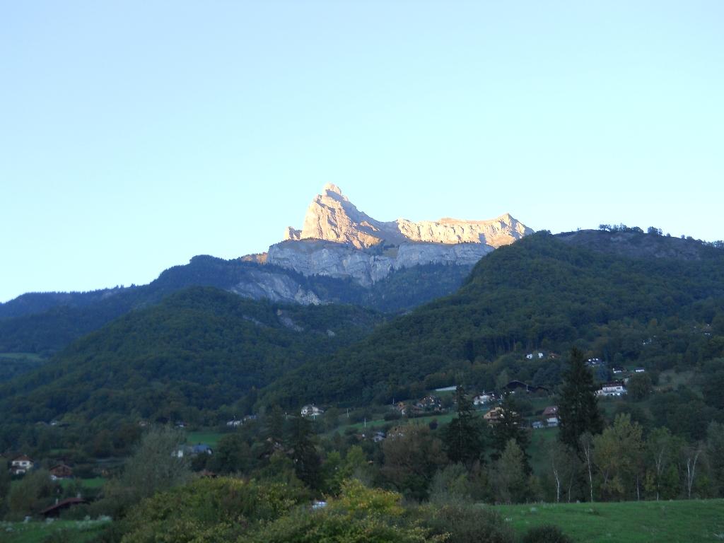 vica-2012-163